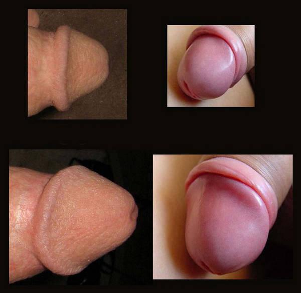 Penis von Jungs: Geile Frauen, Porno Videos, Boys,