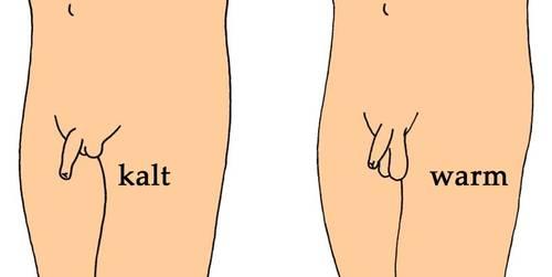 Geheime Kommandozentrale - Die Hoden - Beschneidung von Jungen